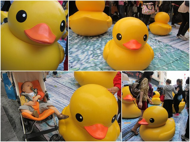 RubberDuckProject1
