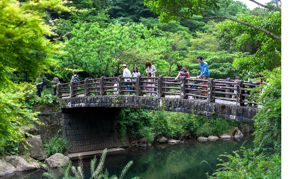 Bridge of wishes
