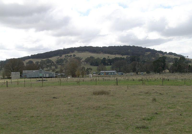 newzealand04c