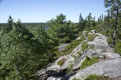 The Bluff Wilderness Trail