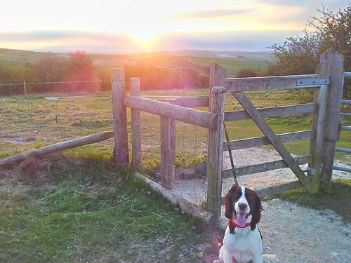 sunrise on cissbury ring by South Downs MTB Skills