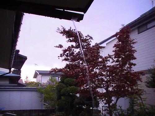 らいさま:雷様