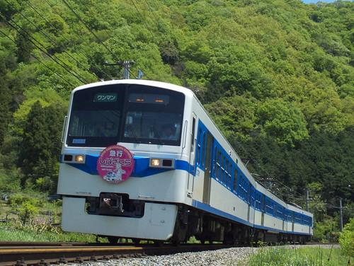 6003F(芝桜×あの花HM) @波久礼〜野上