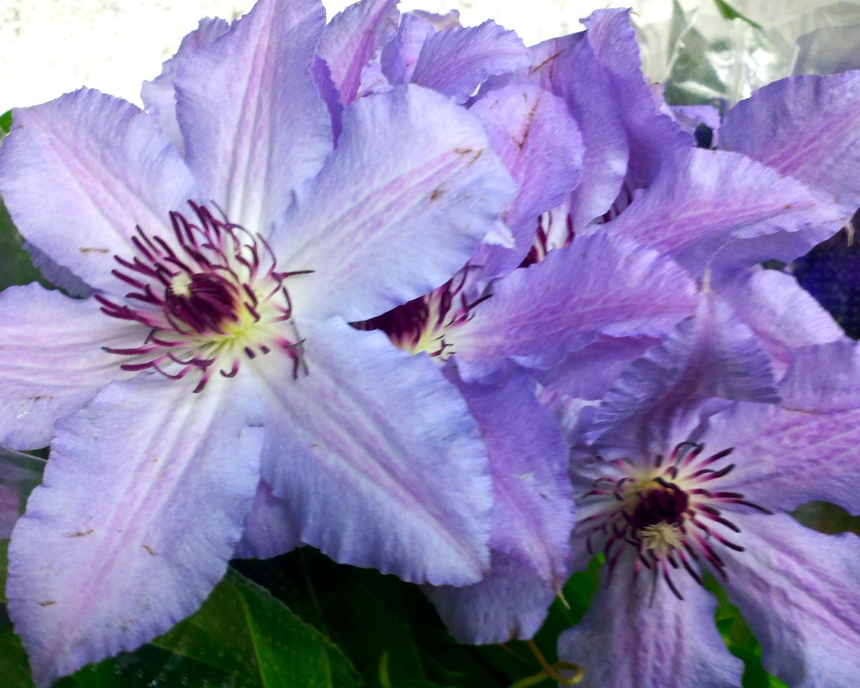 C360_2012-05-26-10-35-29