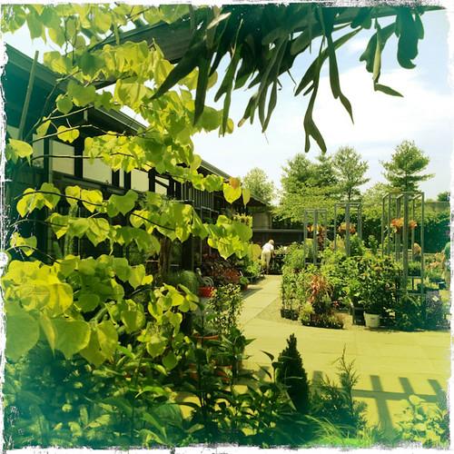 Garden Layers - NYBG