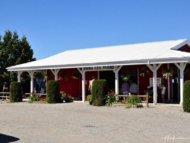 Emma Lea Farms Delta BC 00013