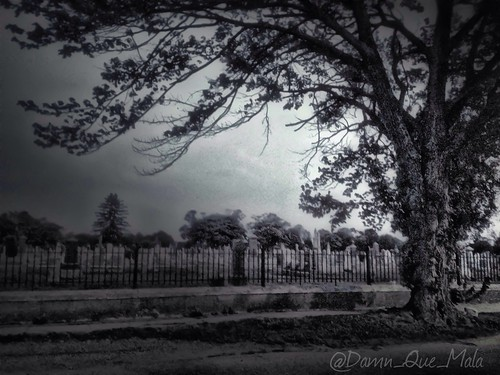 """The fence around a cemetery is foolish, for those inside can't get out and those outside don't want to get in."" ~ Arthur Brisbane (Photo A Day 32/365) by damn_que_mala"
