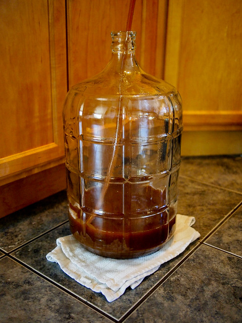 1st HomeBrew - Wort in the Carboy