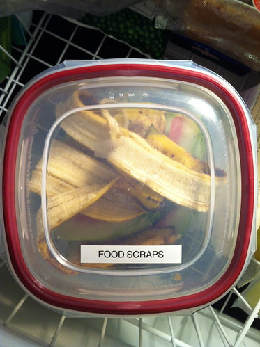 saving your food scraps - 6