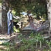 20120704_hayesvalleyfarm_40