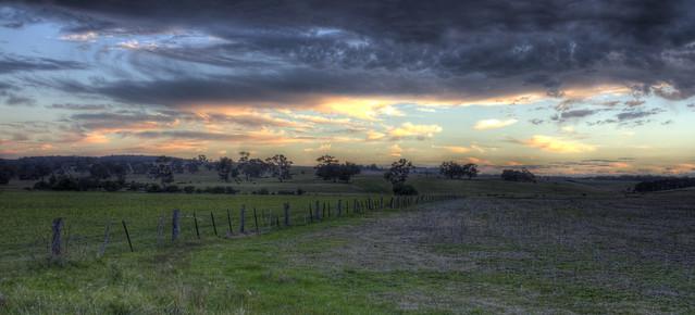 Needle grass paddock and sunrise sky (_MG_7099_100_101)