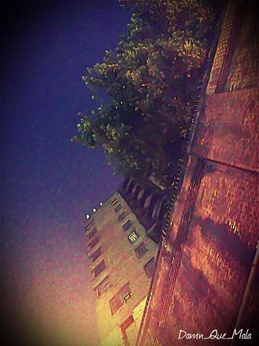 Photo A Day 25/365 by damn_que_mala