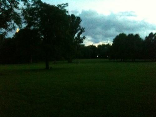 Grüneburgpark in der Dämmerung