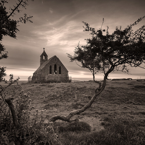 Abandoned chapel and tree