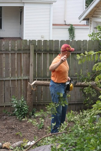 Tree Trimming with Rick (August 2012) 005