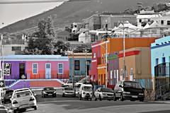 Colorful Rose str in Bo Kaap