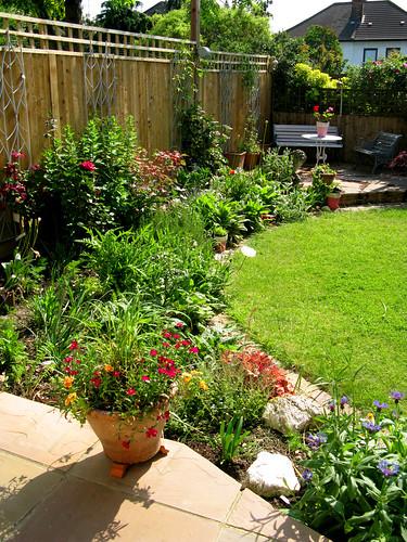 It looks like a proper, proper garden