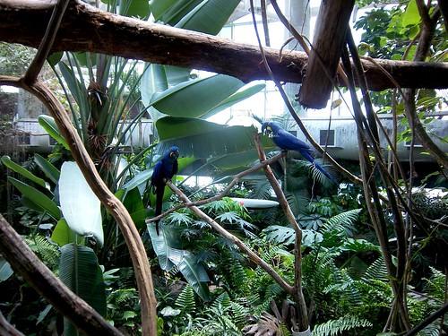 Audubon Aquarium Gardens
