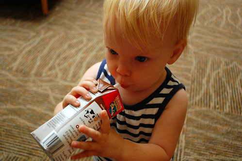 Beatrice discovers chocolate milk.