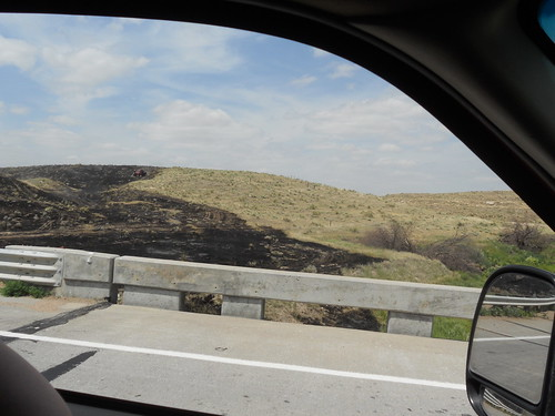 View of the burned area from the pickup