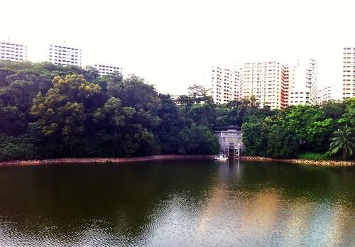 bukit panjang park