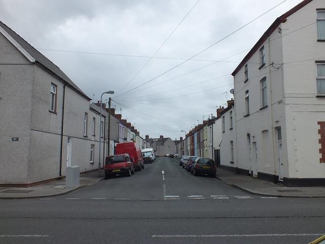 Terminator mole hills, Cardiff