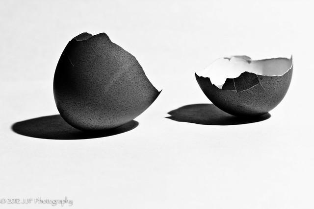 2012_Jul_26_Egg Shells_020