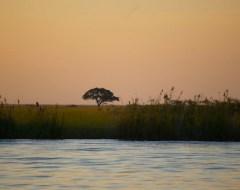 Zambia - Chobe National Park, Botswana