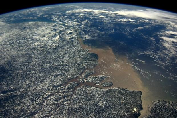 Gespikkeld regenwoud. De monding van de Amazone.