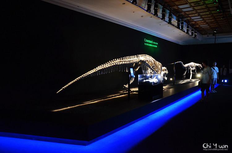 地球最古老的恐龍展08.jpg