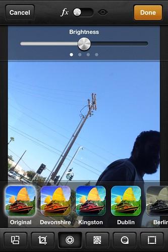Camera Roll-3315