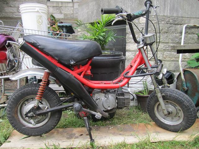 Mopeds | Ted Sliwinski