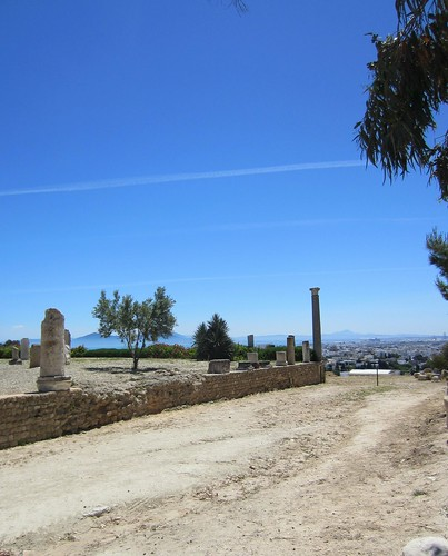 ruins at carthage, overlooking tunis