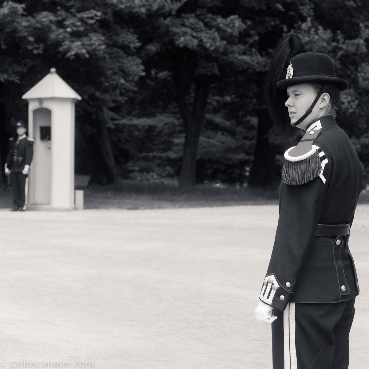 Cambio de guardia en el palacio real