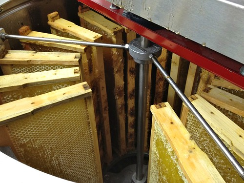 Honey frames in extractor 2