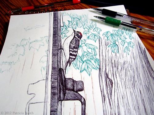 Day 215 Downy Woodpecker Sketch by pixygiggles