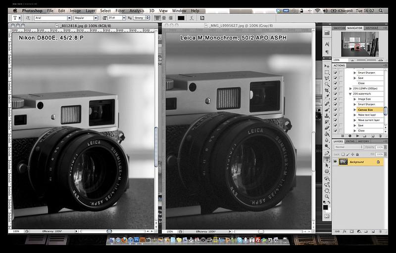 MM vs D800E 3 copy