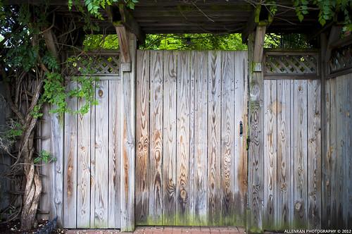 Wood door, I like the texture
