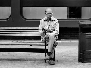 lonely widower