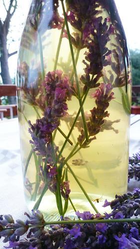 Lavander Vinegar - Aceto alla lavanda