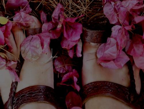 among flowers by Rossella Sferlazzo