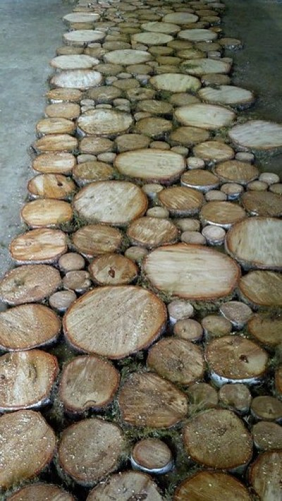 wood circles slabs used as walkway