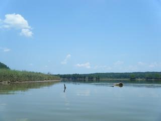 Broad River at Parr Shoals