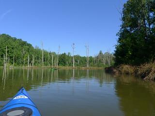 Lake Blalock Paddlefest-059
