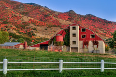 Fall Colored Barn