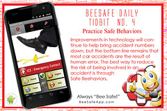 BeeSafe™ Daily Tip No. 4