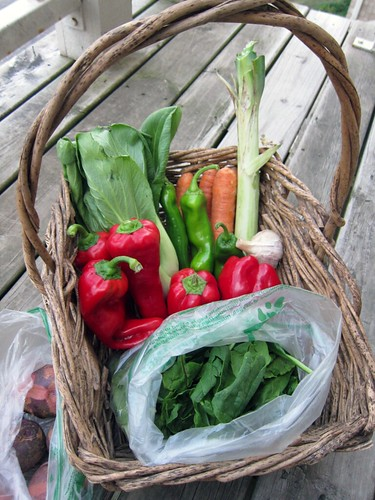 Basket full o' produce, featuring carrots, peppers, spinach, and more!