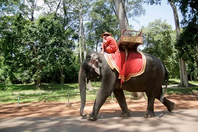 Angkor Wat-2