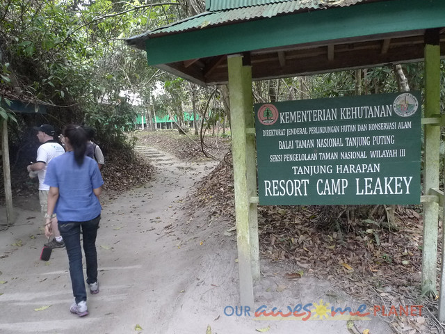 Orangutan World, Tanjung Puting Borneo Adventure-231.jpg