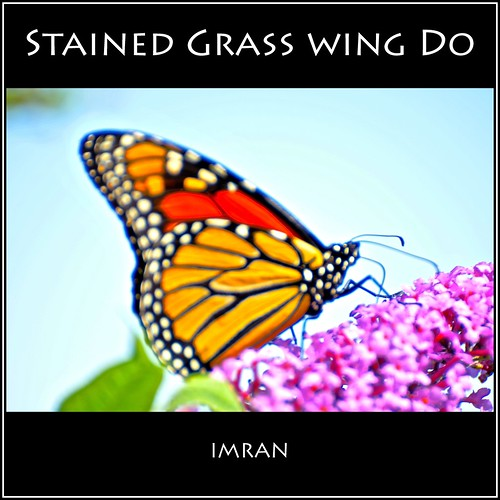 Stained Grass Wing Do? Bad Puns Seen On Good Fun Scene - IMRAN™ by ImranAnwar